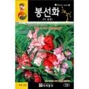 겹꽃 봉선화씨앗 ( garden balsam seed 100알 )