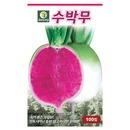 수박 무 100립 수박무 무씨앗 과일무 무씨 무우씨앗