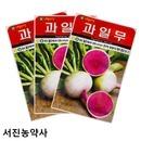 아람 과일무씨앗 수박무 100립 안토시아닌 풍부